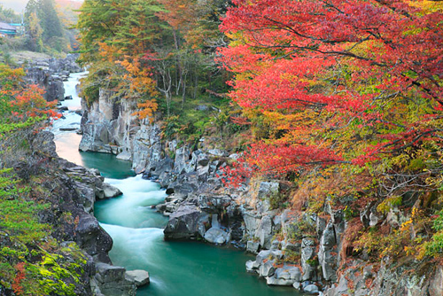 紅葉と水画像
